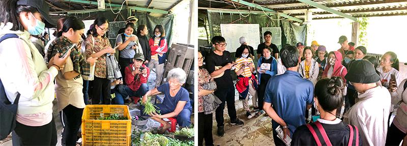DH Van lang thuc tap nganh cong nghe sinh hoc hooc mon 2018 3